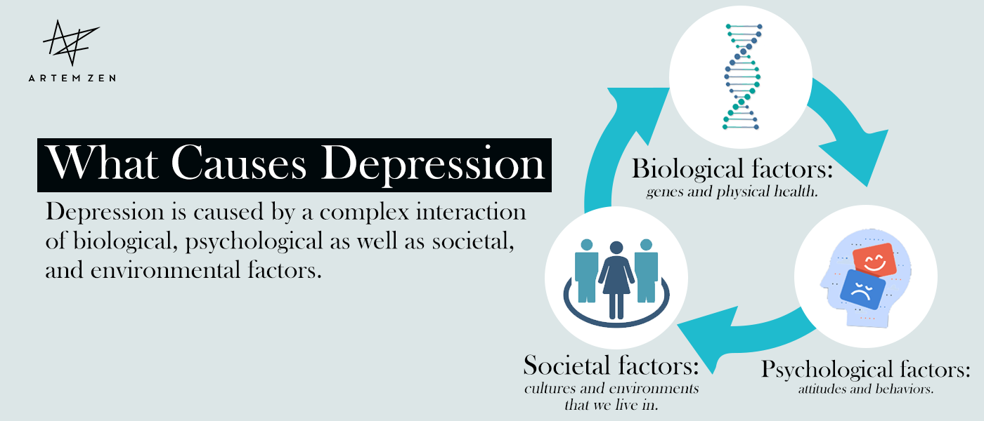 What Causes Depression infographic